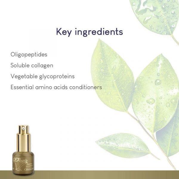 GERnétic Cells Life - key ingredients