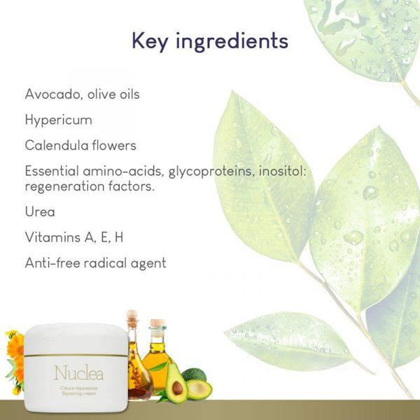 GERnétic Nuclea - key ingredients