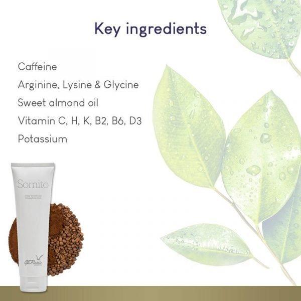 GERnétic Somito - Key Ingredients